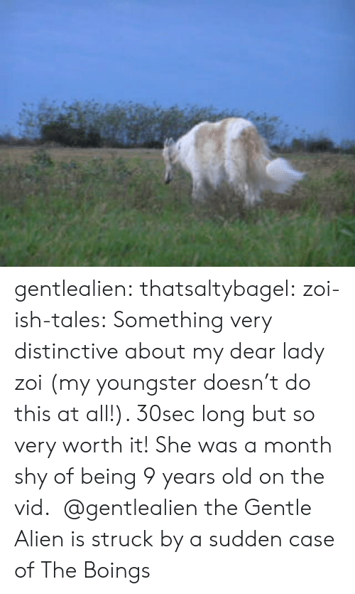 my dear: gentlealien: thatsaltybagel:  zoi-ish-tales:  Something very distinctive about my dear lady zoi (my youngster doesn't do this at all!). 30sec long but so very worth it! She was a month shy of being 9 years old on the vid.   @gentlealien   the Gentle Alien is struck by a sudden case of The Boings