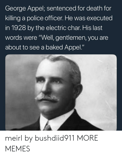 "Baked, Dank, and Memes: George Appel; sentenced for death for  killing a police officer. He was executed  in 1928 by the electric char. His last  words were ""Well, gentlemen, you are  about to see a baked Appel."" meirl by bushdiid911 MORE MEMES"