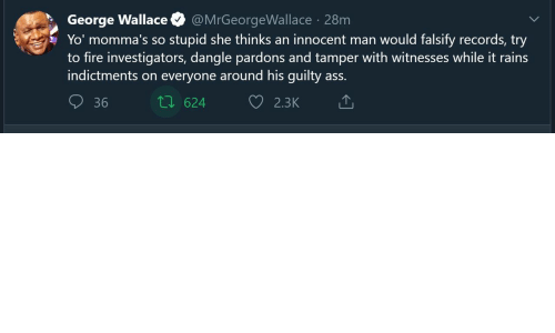 Ass, Fire, and Yo: George Wallace  Yo' momma's so stupid she thinks an innocent man would falsify records, try  to fire investigators, dangle pardons and tamper with witnesses while it rains  indictments on everyone around his guilty ass.  @MrGeorgeWallace · 28m  27 624  36  2.3K