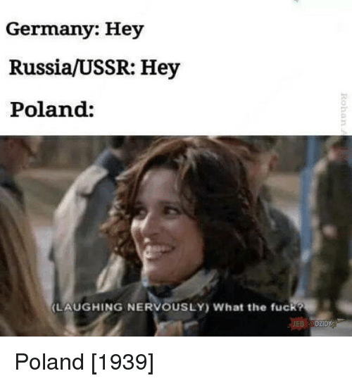 Fuck, Germany, and Russia: Germany: Hey  Russia/USSR: Hey  Poland:  0  LAUGHING NERVOUSLY What the fuck?  DZIDY Poland [1939]