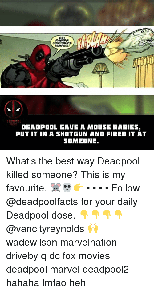Deadpoole: GET  CORPORATE  VAMPIRE  RCT  DEAOPOOL GAVE A MOuSE RABIES,  PUT IT IN A SHOTGUN AND FIRED IT AT  SOMEONE. What's the best way Deadpool killed someone? This is my favourite. 🐭💀👉 • • • • Follow @deadpoolfacts for your daily Deadpool dose. 👇👇👇👇 @vancityreynolds 🙌 wadewilson marvelnation driveby q dc fox movies deadpool marvel deadpool2 hahaha lmfao heh