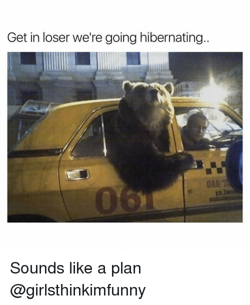Funny, Hibernate, and Hibernation: Get in loser we're going hibernating Sounds like a plan @girlsthinkimfunny