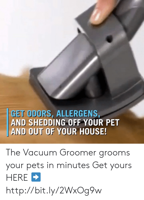 Memes, Pets, and House: GET ODORS, ALLERGENS,  AND SHEDDING OFF YOUR PET  AND OUT OF YOUR HOUSE! The Vacuum Groomer grooms your pets in minutes Get yours HERE ➡️ http://bit.ly/2WxOg9w