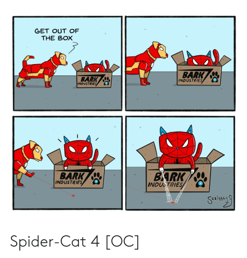 Spider, Cat, and Box: GET OUT OF  THE BOX  BARK  INDUSTRIES  BARK  INDUSTRIES  BARK  BARK  INDUSTRIES  INDUSTRIES Spider-Cat 4 [OC]