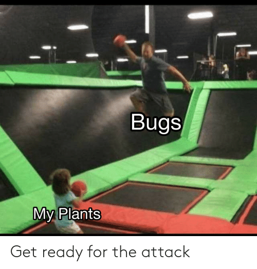 attack: Get ready for the attack