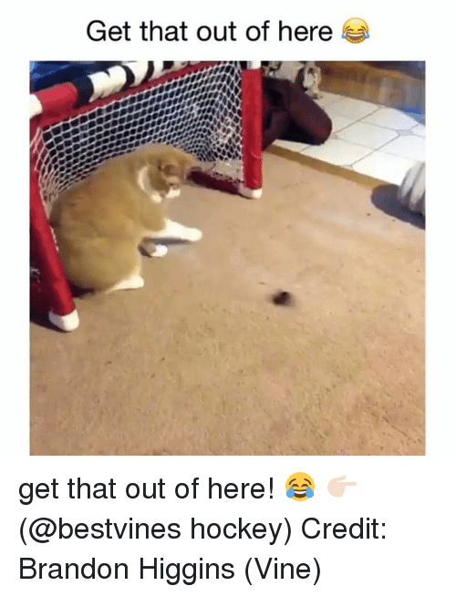 Hockey, Memes, and Vine: Get that out of here get that out of here! 😂 👉🏻(@bestvines hockey) Credit: Brandon Higgins (Vine)