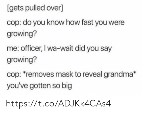 Grandma, Memes, and Mask: [gets pulled over]  cop: do you know how fast you were  growing?  me: officer, I wa-wait did you say  growing?  cop: removes mask to reveal grandma*  you've gotten so big https://t.co/ADJKk4CAs4