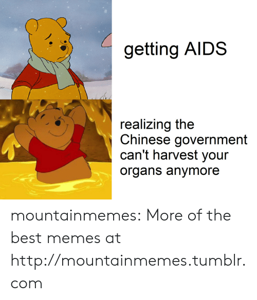 Memes, Tumblr, and Best: getting AIDS  realizing the  Chinese government  can't harvest your  organs anymore mountainmemes:  More of the best memes at http://mountainmemes.tumblr.com