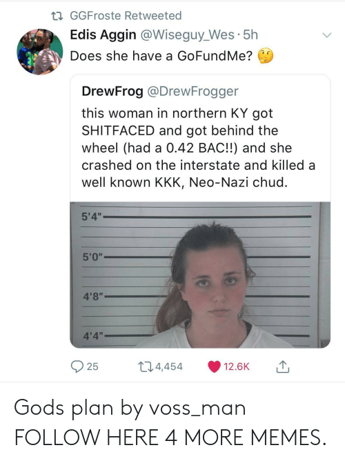 """Dank, Kkk, and Memes: GGFroste Retweeted  Edis Aggin @Wiseguy_Wes 5h  Does she have a GoFundMe?  DrewFrog @DrewFrogger  this woman in northern KY got  SHITFACED and got behind the  wheel (had a 0.42 BAC!!) and she  crashed on the interstate and killed a  well known KKK, Neo-Nazi chud  5'4""""  4'8""""  4'4""""  25  t 4,  454  12.6K Gods plan by voss_man FOLLOW HERE 4 MORE MEMES."""