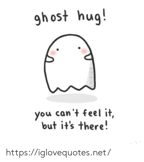 Net, You, and Hug: gh ost hug!  you can't feel it,  but it's there!  CHIBIRD https://iglovequotes.net/