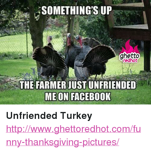 """Facebook, Funny, and Ghetto: ghetto  redhot  THE FARMER JUST UNFRIENDED  MEON FACEBOOK <p><strong>Unfriended Turkey</strong></p><p><a href=""""http://www.ghettoredhot.com/funny-thanksgiving-pictures/"""">http://www.ghettoredhot.com/funny-thanksgiving-pictures/</a></p>"""