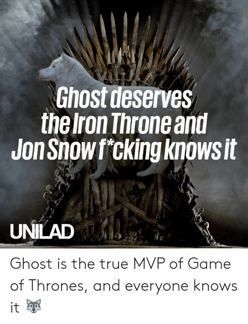 Dank, Game of Thrones, and True: Ghost deserves  the Iron Throne and  Jon Showf cking knowsit  UNILAD Ghost is the true MVP of Game of Thrones, and everyone knows it 🐺