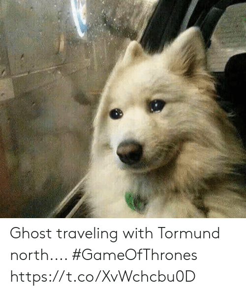 Ghost, Gameofthrones, and Traveling: Ghost traveling with Tormund north.... #GameOfThrones https://t.co/XvWchcbu0D