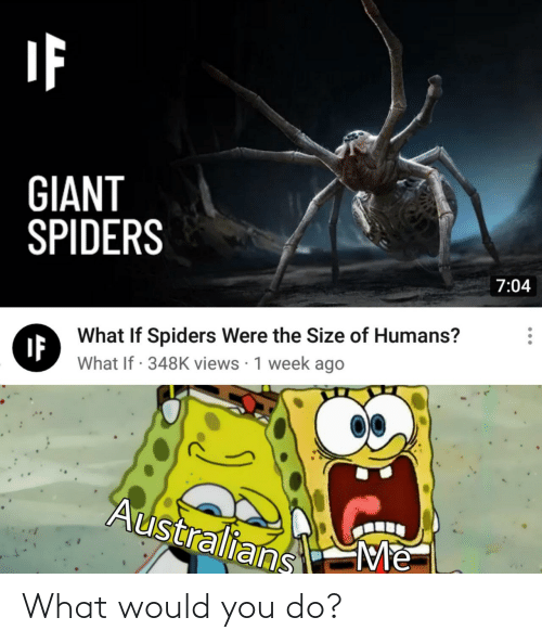 Spiders: GIANT  SPIDERS  7:04  What If Spiders Were the Size of Humans?  IF  What If · 348K views · 1 week ago  Australians  Me What would you do?