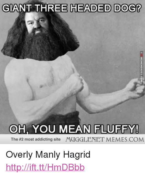 "Overly Manly: GIANT THREE HEADED DOG?  OH, YOU MEAN FLUFFY!  The #2 most addicting site /YCIGGLENET MEMES.COM <p>Overly Manly Hagrid <a href=""http://ift.tt/HmDBbb"">http://ift.tt/HmDBbb</a></p>"