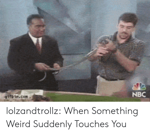 Tumblr, Weird, and Blog: gifb in.com  NBC lolzandtrollz:  When Something Weird Suddenly Touches You