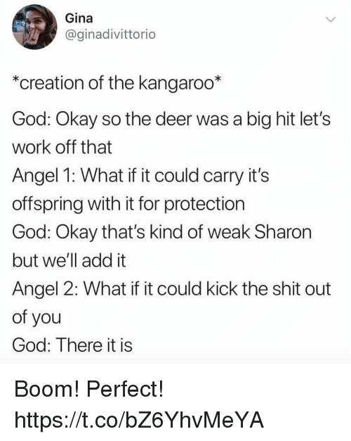 """Deer, Funny, and God: Gina  @ginadivittorio  """"creation of the kangaroo*  God: Okay so the deer was a big hit let's  work off that  Angel 1: What if it could carry it's  offspring with it for protection  God: Okay that's kind of weak Sharon  but we'll add it  Angel 2: What if it could kick the shit out  of you  God: There it is Boom! Perfect! https://t.co/bZ6YhvMeYA"""