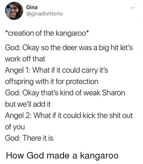 Deer, God, and Shit: Gina  @ginadivittorio  *creation of the kangaroo*  God: Okay so the deer was a big hit let's  work off that  Angel 1: What if it could carry it's  offspring with it for protection  God: Okay that's kind of weak Sharon  but we'll add it  Angel 2: What if it could kick the shit out  of you  God: There it is How God made a kangaroo