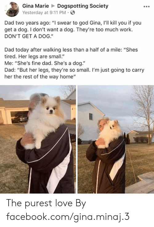 """So Small: Gina MarieDogspotting Society  Yesterday at 9:11 PM  Dad two years ago: """"I swear to god Gina, I'll kill you if you  get a dog. I don't want a dog. They're too much work.  DON'T GET A DOG.""""  Dad today after walking less than a half of a mile: """"Shes  tired. Her legs are small""""  Me: """"She's fine dad. She's a dog.""""  Dad: """"But her legs, they're so small. I'm just going to carry  her the rest of the way home"""" The purest love  By facebook.com/gina.minaj.3"""