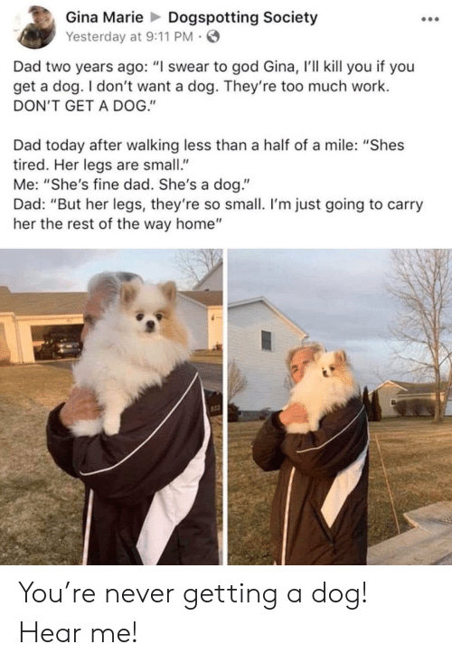 """I Swear To God: Gina MarieDogspotting Society  Yesterday at 9:11 PM  Dad two years ago: """"I swear to god Gina, 'll kill you if you  get a dog. I don't want a dog. They're too much work.  DON'T GET A DOG.""""  Dad today after walking less than a half of a mile: """"Shes  tired. Her legs are small  Me: """"She's fine dad. She's a dog.""""  Dad: """"But her legs, they're so small. I'm just going to carry  her the rest of the way home"""" You're never getting a dog! Hear me!"""