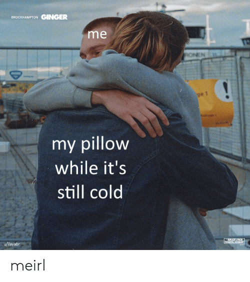 My Pillow, Cold, and MeIRL: GINGER  BROCKHAMPTON  me  ONEN  ge 1  my pillow  while it's  still cold  u/ilayabr  PARENTAL ADV8O meirl