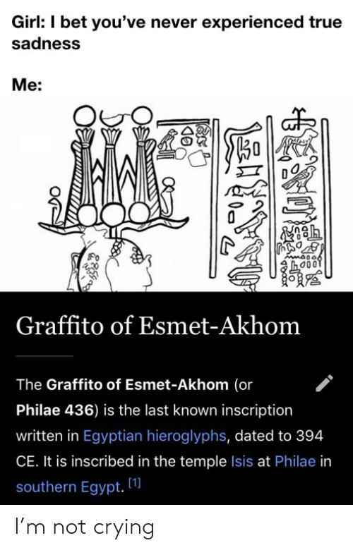 Crying, I Bet, and Isis: Girl: I bet you've never experienced true  sadness  Me:  కి  AmA006  Graffito of Esmet-Akhom  The Graffito of Esmet-Akhom (or  Philae 436) is the last known inscription  written in Egyptian hieroglyphs, dated to 394  CE. It is inscribed in the temple Isis at Philae in  [1]  southern Egypt. I'm not crying