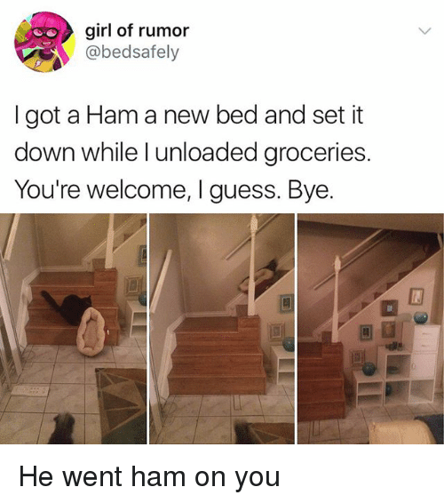 Memes, Girl, and Guess: girl of rumor  @bedsafely  I got a Ham a new bed and set it  down while l unloaded groceries  You're welcome, I guess. Bye.  回町 He went ham on you