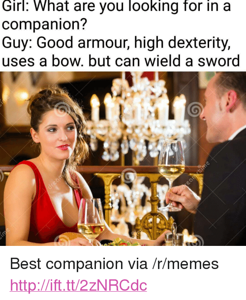 """dexterity: Girl: What are you looking for in a  companion?  Guy: Good armour, high dexterity,  uses a bow. but can wield a sword <p>Best companion via /r/memes <a href=""""http://ift.tt/2zNRCdc"""">http://ift.tt/2zNRCdc</a></p>"""
