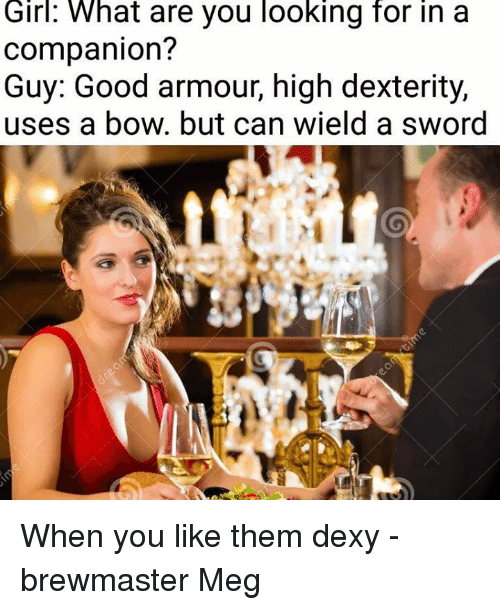 dexterity: Girl:  What  are you looking  for  in  a  companion?  Guy: Good armour, high dexterity,  uses a bow. but can wield a sword When you like them dexy  -brewmaster Meg