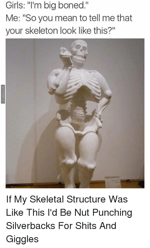 """You Mean To Tell Me: Girls: """"I'm big boned.""""  Me: """"So you mean to tell me that  your skeleton look like this?"""" If My Skeletal Structure Was Like This I'd Be Nut Punching Silverbacks For Shits And Giggles"""