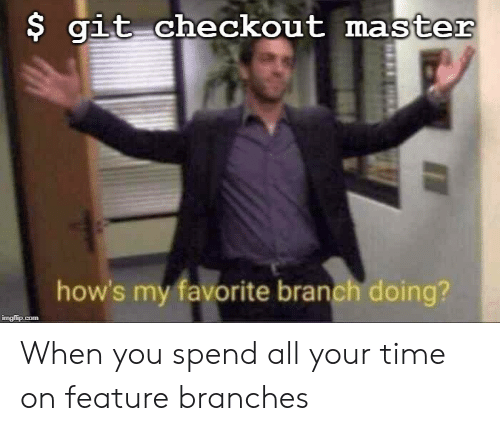 Checkout: $ git checkout master  how's my favorite branch doing?  imgflip.com When you spend all your time on feature branches