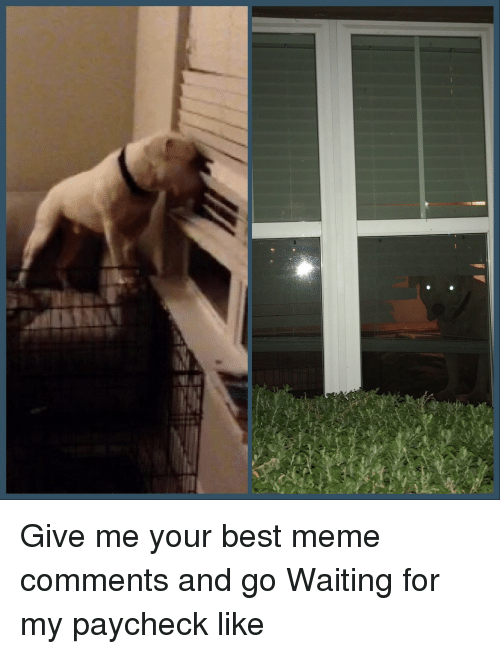 Meme, Best, and Waiting...: Give me your best meme comments and go  Waiting for my paycheck like