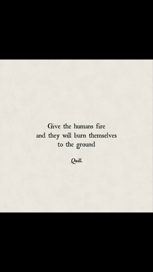 Fire, Quill, and Will: Give the humans fire  and they will burn themselves  to the ground  Quill.