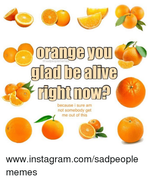 Alive, Instagram, and Nihilist: glad be alive  right now  because i sure am  not somebody get  me out of this www.instagram.com/sadpeoplememes