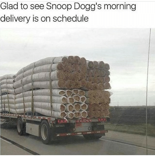 Snooping: Glad to see Snoop Dogg's morning  delivery is on schedule