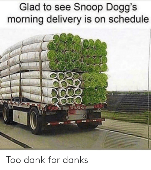 Snoop: Glad to see Snoop Dogg's  morning delivery is on schedule Too dank for danks
