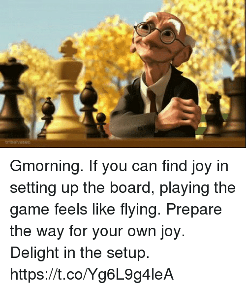 Memes, The Game, and Game: Gmorning. If you can find joy in setting up the board, playing the game feels like flying. Prepare the way for your own joy. Delight in the setup. https://t.co/Yg6L9g4leA