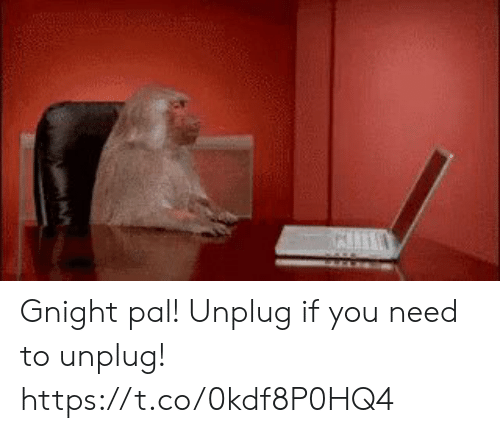 Memes, 🤖, and You: Gnight pal! Unplug if you need to unplug! https://t.co/0kdf8P0HQ4