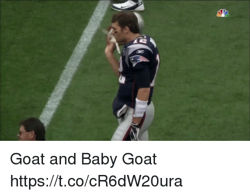 Memes, Goat, and Baby: Goat and Baby Goat https://t.co/cR6dW20ura
