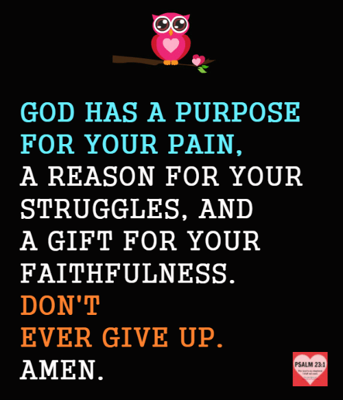 God, Memes, and Pain: GOD HAS A PURPOSE  FOR YOUR PAIN,  A REASON FOR YOUR  STRUGGLES, AND  A GIFT FOR YOUR  FAITHFULNESS.  DON'T  EVER GIVE UP.  AMEN.  PSALM 23:1  ed