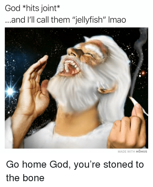"""God, Lmao, and Memes: God *hits joint*  and l'll call them """"jellyfish"""" lmao  MADE WITH MOMUS Go home God, you're stoned to the bone"""