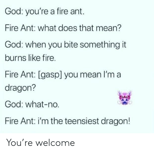 ant: God: you're a fire ant.  Fire Ant: what does that mean?  God: when you bite something it  burns like fire.  Fire Ant: [gasp] you mean I'm a  dragon?  God: what-no.  Fire Ant: i'm the teensiest dragon! You're welcome