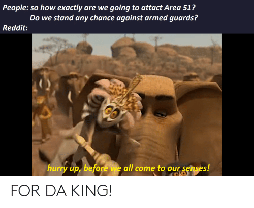 Reddit, Dank Memes, and How: going to attact Area 51?  Do we stand any chance against armed guards?  People: so how exactly are we  Reddit:  hurry up, before we all come to our senses! FOR DA KING!
