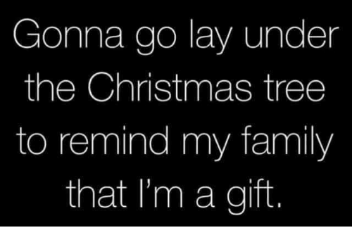 Christmas, Dank, and Family: Gonna go lay under  the Christmas tree  to remind my family  that I'm a gift