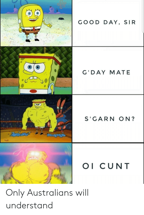 Cunt, Good, and Day: GOOD DAY, SIR  G'DAY MATE  S'GARN ON?  OI CUNT  BA Only Australians will understand