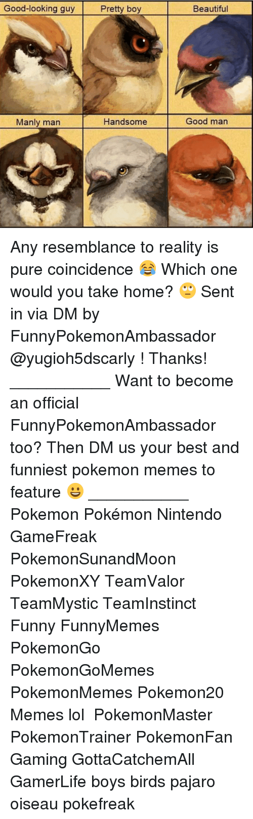 Pretty Boy: Good-looking guy  Pretty boy  Manly man  Handsome  Beautiful  Good man Any resemblance to reality is pure coincidence 😂 Which one would you take home? 🙄 Sent in via DM by FunnyPokemonAmbassador @yugioh5dscarly ! Thanks! ___________ Want to become an official FunnyPokemonAmbassador too? Then DM us your best and funniest pokemon memes to feature 😀 ___________ Pokemon Pokémon Nintendo GameFreak PokemonSunandMoon PokemonXY TeamValor TeamMystic TeamInstinct Funny FunnyMemes PokemonGo PokemonGoMemes PokemonMemes Pokemon20 Memes lol ポケットモンスター PokemonMaster PokemonTrainer PokemonFan Gaming GottaCatchemAll GamerLife boys birds pajaro oiseau pokefreak