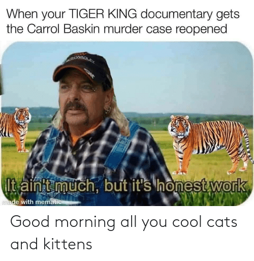 Good Morning: Good morning all you cool cats and kittens