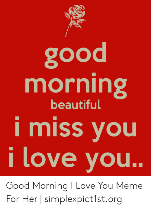 Beautiful, Love, and Meme: good  morning  beautiful  i miss vou  love you Good Morning I Love You Meme For Her | simplexpict1st.org