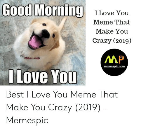 Crazy, Love, and Meme: Good Morning  ILove You  Meme That  Make You  Crazy (2019)  MP  Move You  memespic.com Best I Love You Meme That Make You Crazy (2019) - Memespic