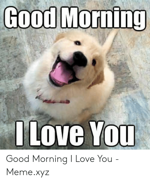 Love, Meme, and Good Morning: Good Morning  Love YOu Good Morning I Love You - Meme.xyz